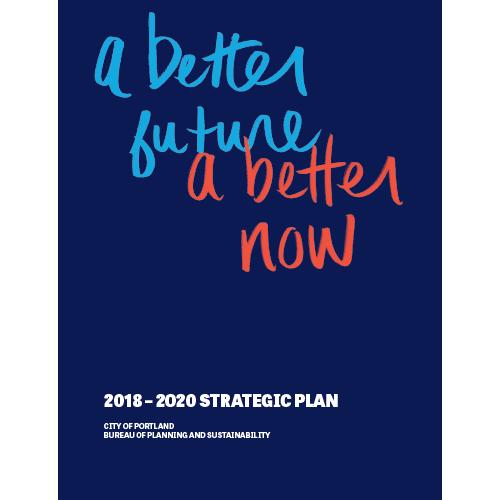 Bps Disaster Management Strategy >> 2018 2020 Strategic Plan