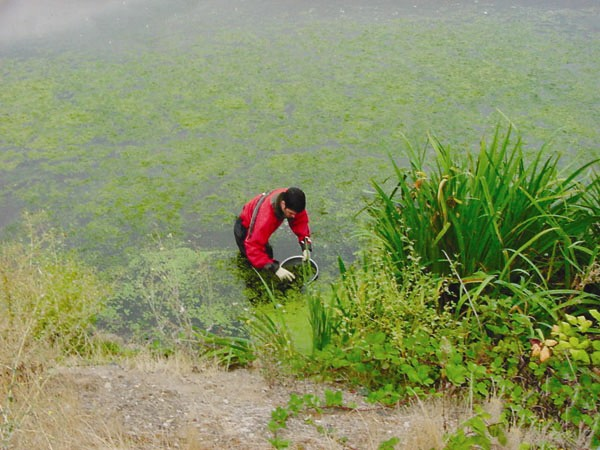 Photo: collecting water samples