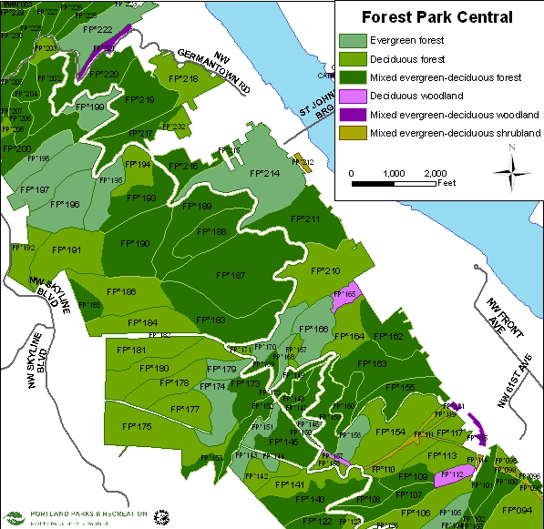 Forest Park Central