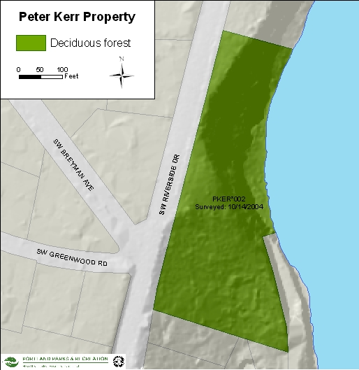 Peter Kerr Property