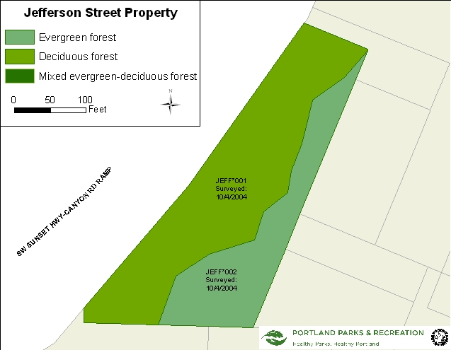 Jefferson Street Property