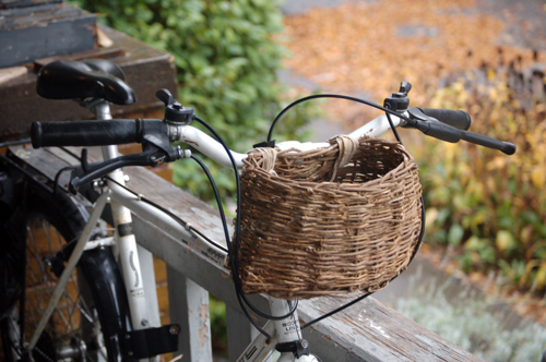 Ivy Bike Basket