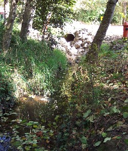Woods Creek culvert