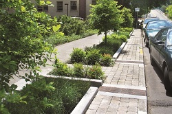Green Streets Green Infrastructure The City Of