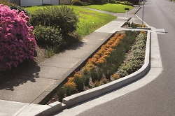 green street curb extension