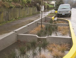 green street managing stormwater