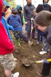 Photo of kids planting trees