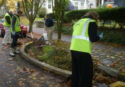 green street steward clean up event
