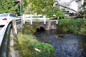 photo of old culvert at SE 21st and Tenino