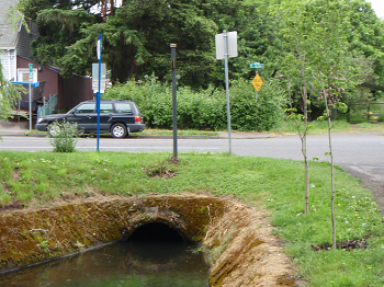 photo of the SE Tacoma Street culvert