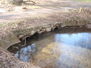 closeup photo of the Eastmoreland Golf Course culvert