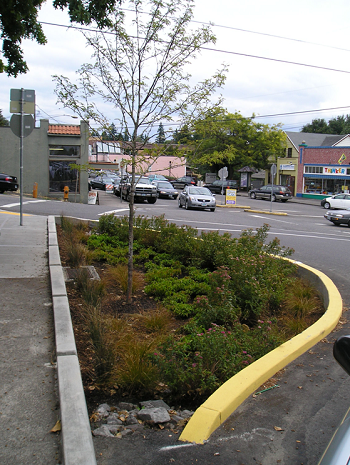 photo of a green street in Multnomah Village