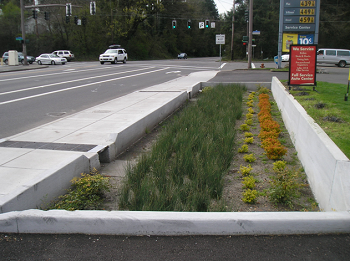 photo of a stormwater facility on Multnomah Boulevard