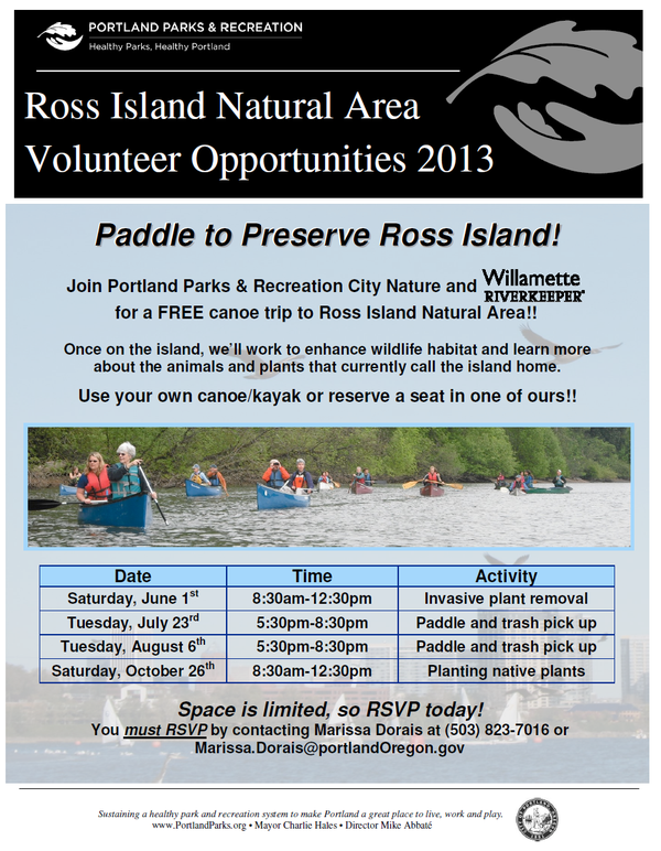 Event Flyer with image of people paddling canoes