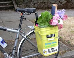 bike bucket with groceries