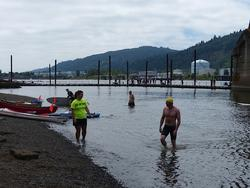 swimmers finish at the St. Johns Bridge