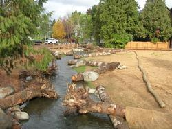 newly restored natural area at Crystal Springs