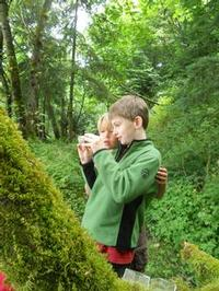 Two boys examine an insect in the forest