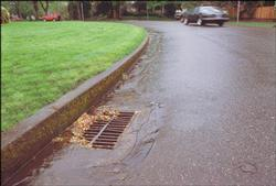 stormwater flowing to storm drain
