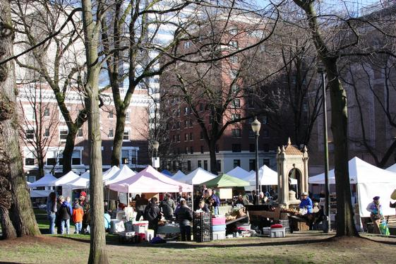 Winter Market at Shmanski Square