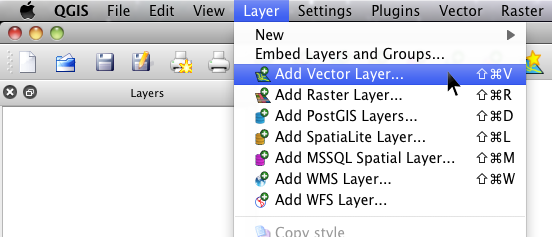 Layer Options in QGIS