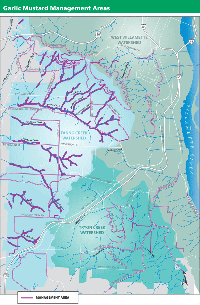 Garlic mustard management area map