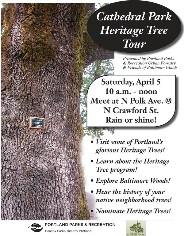 Cathedral Park Heritage Tree Tour