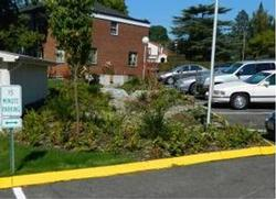 rain garden at Western Seminary parking lot