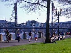 Biker, walkers and joggers along the Waterfront.