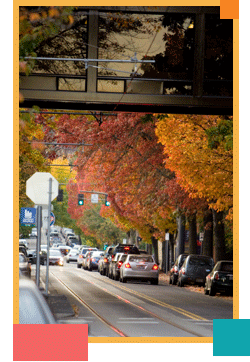 Photo: Parking in Fall