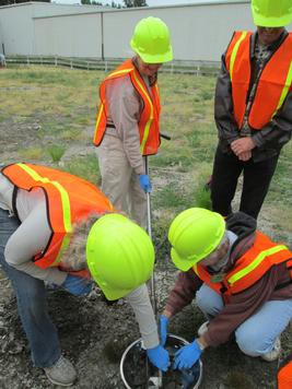 volunteers use a hand auger to collect soil samples