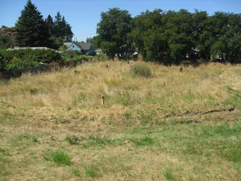 a vacant lot adjacent to a closed landfill