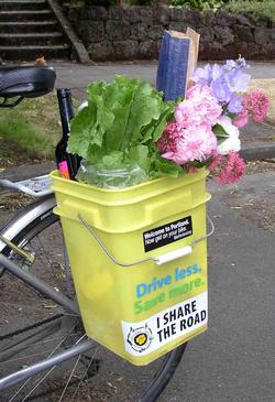 Bike bucket filled with groceries