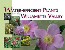 Water Efficient Plants for the Willamette Valley