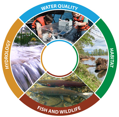 Four important factors of watershed health