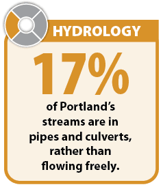 Graphic: 17 percent of Portland's streams are in pipes and culverts, rather than flowing freely.
