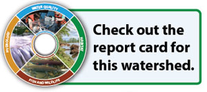 link to Columbia Slough watershed report card