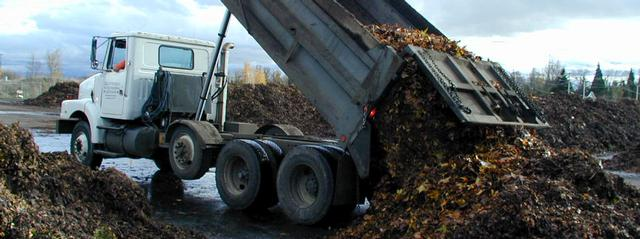 Dumptruck unloading leaves