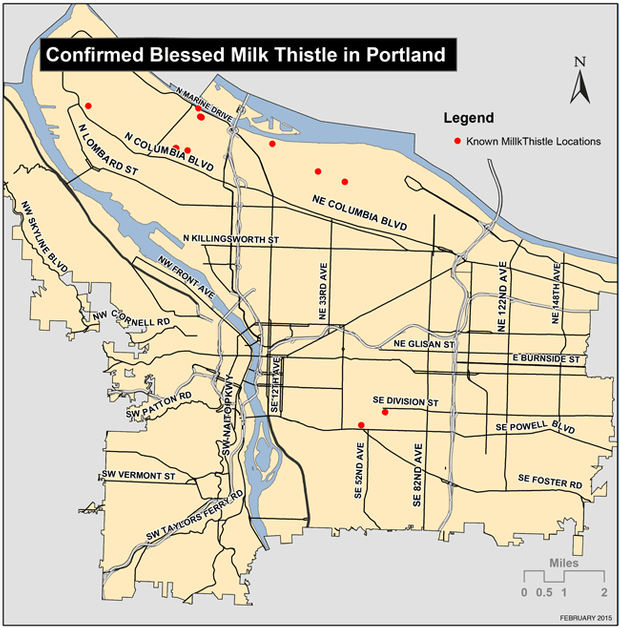 Map of confirmed Blessed Milk Thistle in Portland