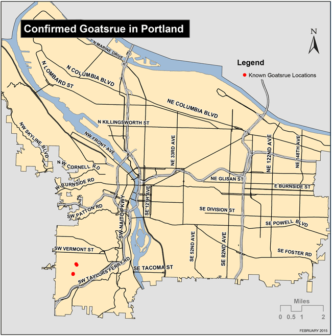 Map of confirmed Goatsrue locations in Portland