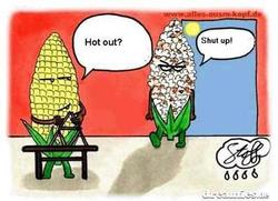 Corn ear in the heat cartoon