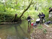 scientists monitoring stream conditions