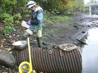 inspecting a sewer outfall pipe