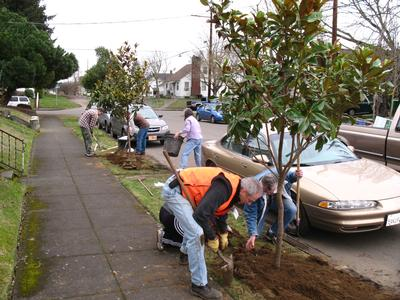 Friends of Trees volunteer planting