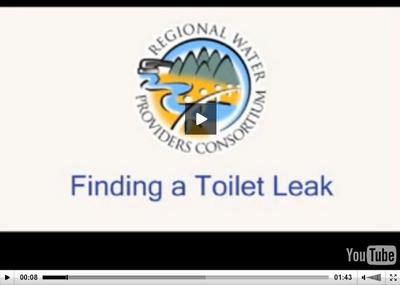 Toilet leak repair video