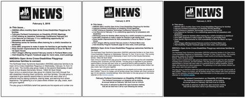 Samples of D-NEWS e-publication styles for user