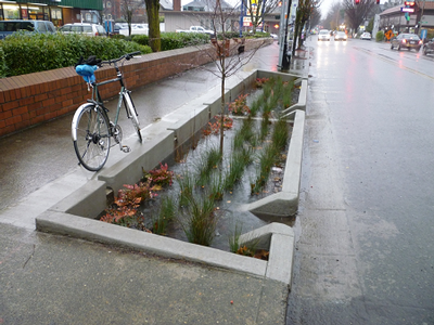What Do Rain Gardens Have To Do With Csos Combined Sewer