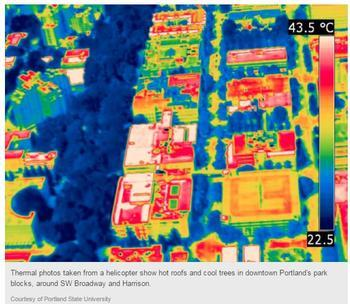 urban heat thermal image