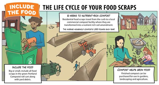Illustration of lifecycle of food scraps