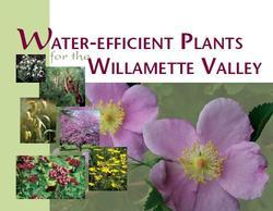 Water-Efficient Plants for the Willamette Valley